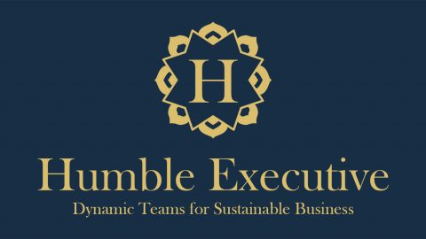 Logo_Dynamic_Teams_For_Sustainable_Business